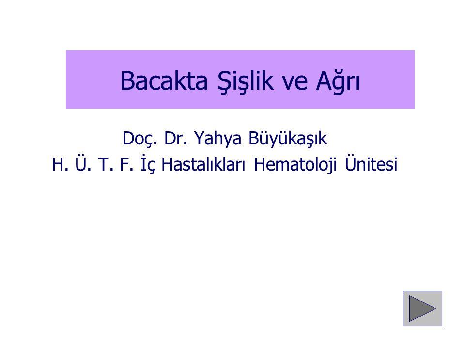 H. Ü. T. F. İç Hastalıkları Hematoloji Ünitesi