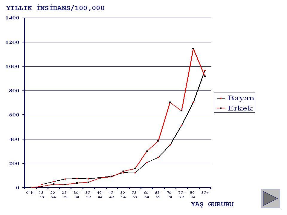 YILLIK İNSİDANS/100,000 YAŞ GURUBU