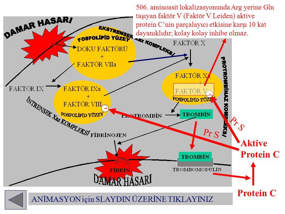 - - Pr S Pr S Aktive Protein C - Protein C