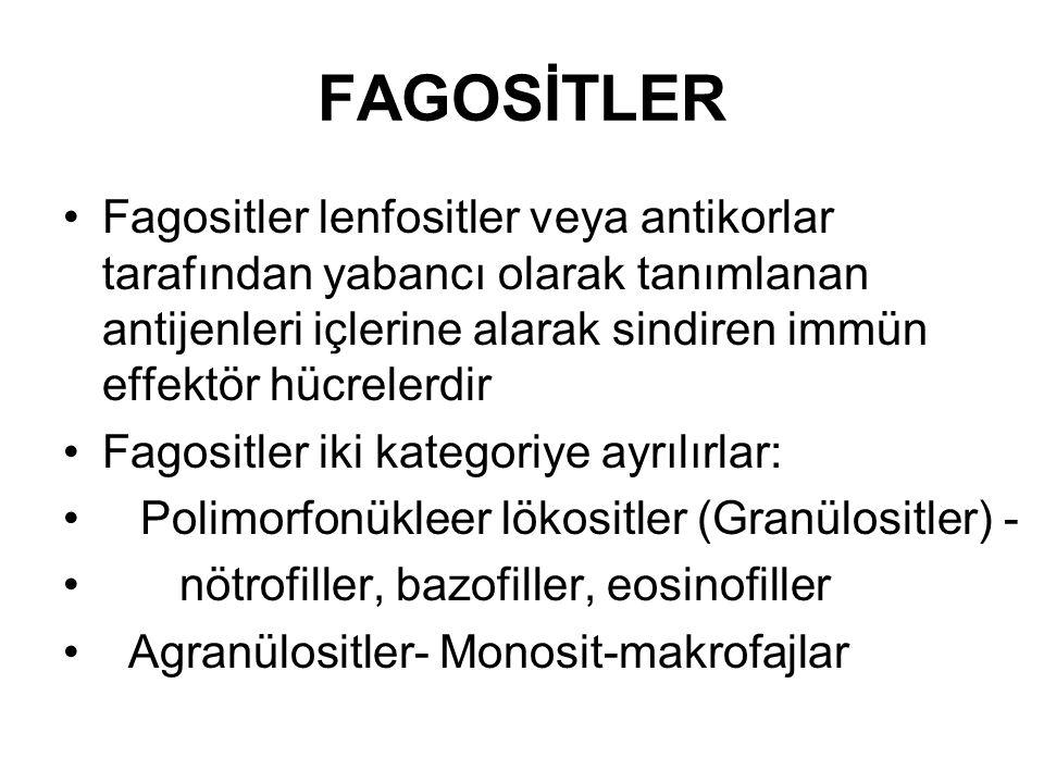 FAGOSİTLER