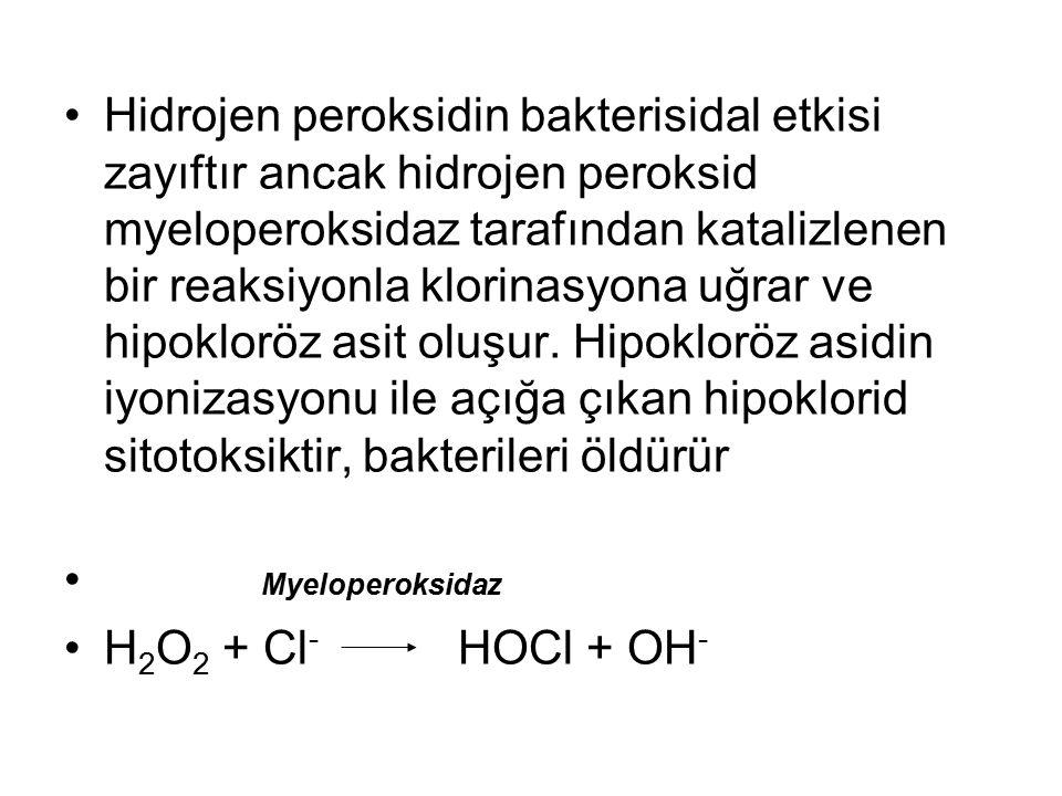 Hidrojen peroksidin bakterisidal etkisi zayıftır ancak hidrojen peroksid myeloperoksidaz tarafından katalizlenen bir reaksiyonla klorinasyona uğrar ve hipokloröz asit oluşur. Hipokloröz asidin iyonizasyonu ile açığa çıkan hipoklorid sitotoksiktir, bakterileri öldürür