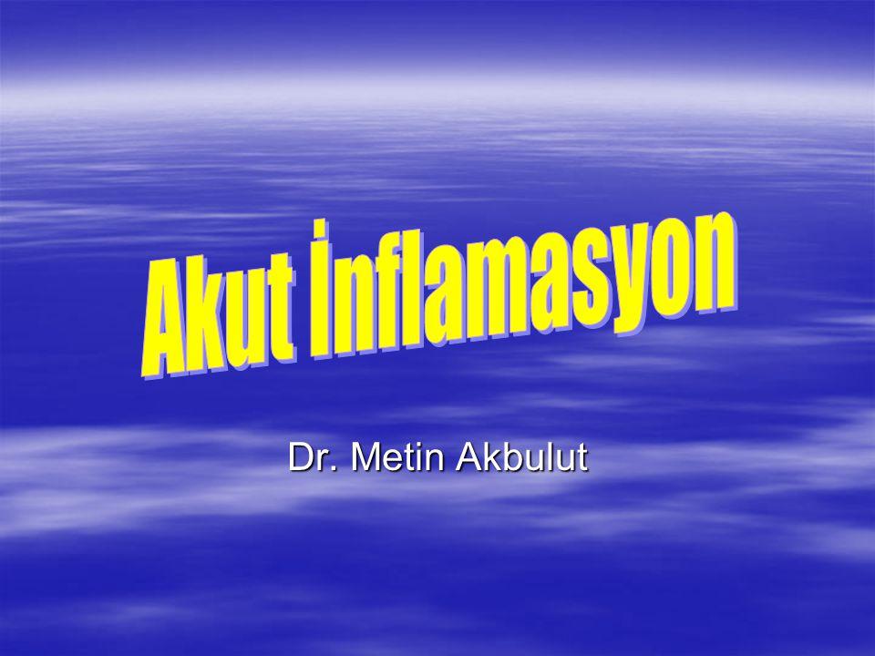 Akut İnflamasyon Dr. Metin Akbulut