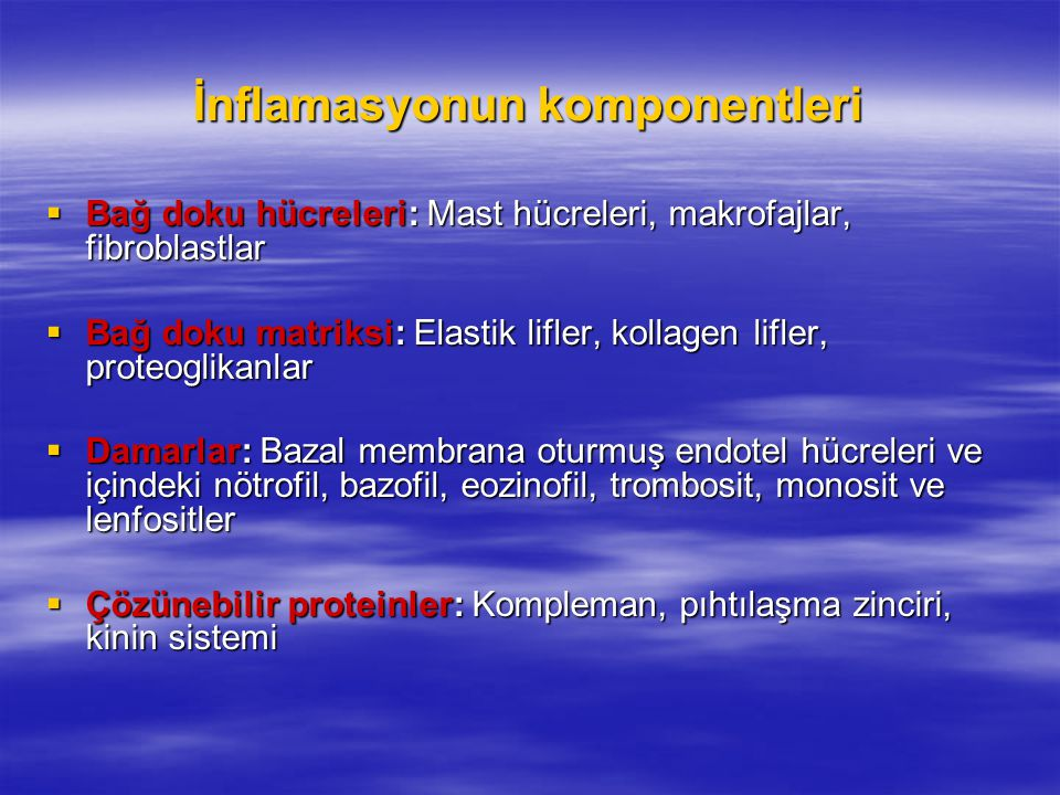 İnflamasyonun komponentleri