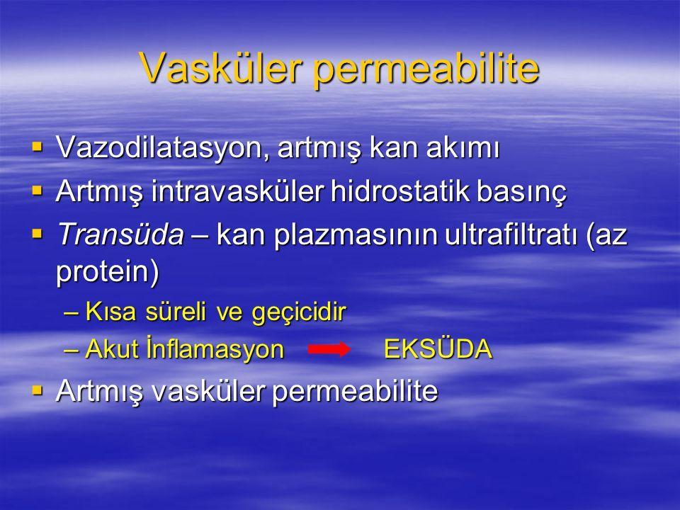 Vasküler permeabilite
