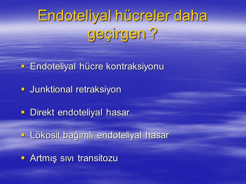 Endoteliyal hücreler daha geçirgen