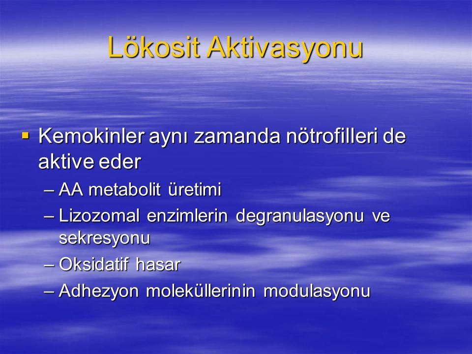 Lökosit Aktivasyonu Kemokinler aynı zamanda nötrofilleri de aktive eder. AA metabolit üretimi. Lizozomal enzimlerin degranulasyonu ve sekresyonu.