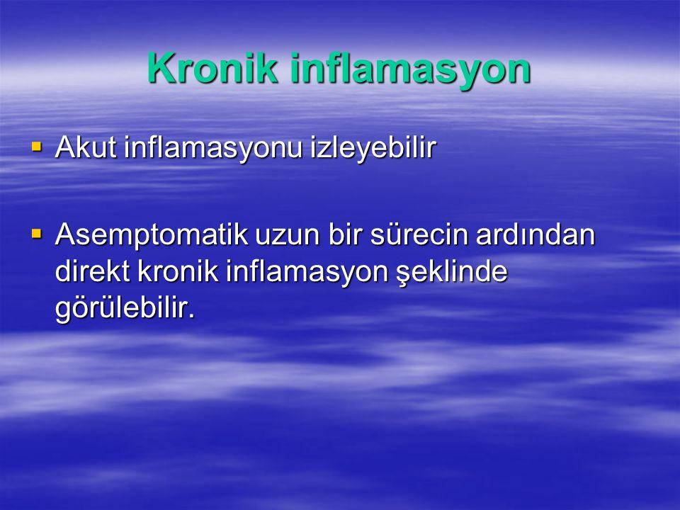 Kronik inflamasyon Akut inflamasyonu izleyebilir