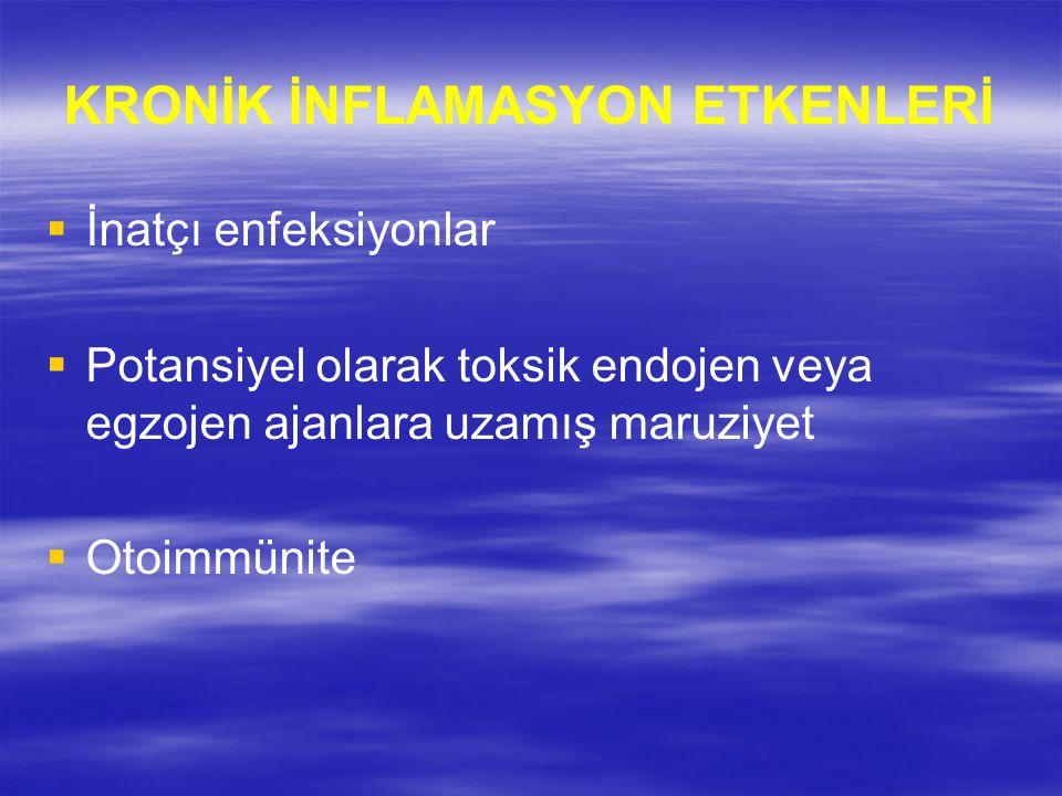KRONİK İNFLAMASYON ETKENLERİ