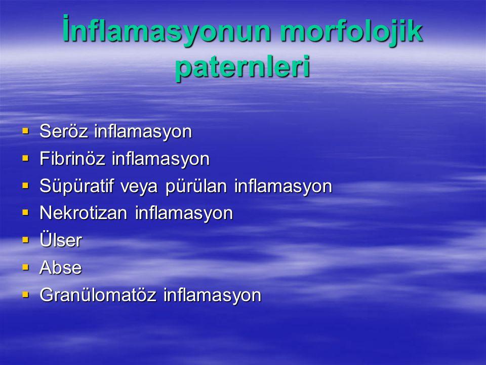 İnflamasyonun morfolojik paternleri