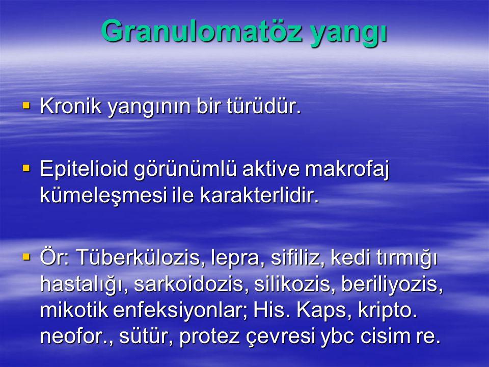 Granulomatöz yangı Kronik yangının bir türüdür.