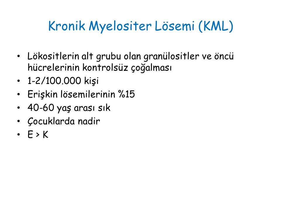 Kronik Myelositer Lösemi (KML)