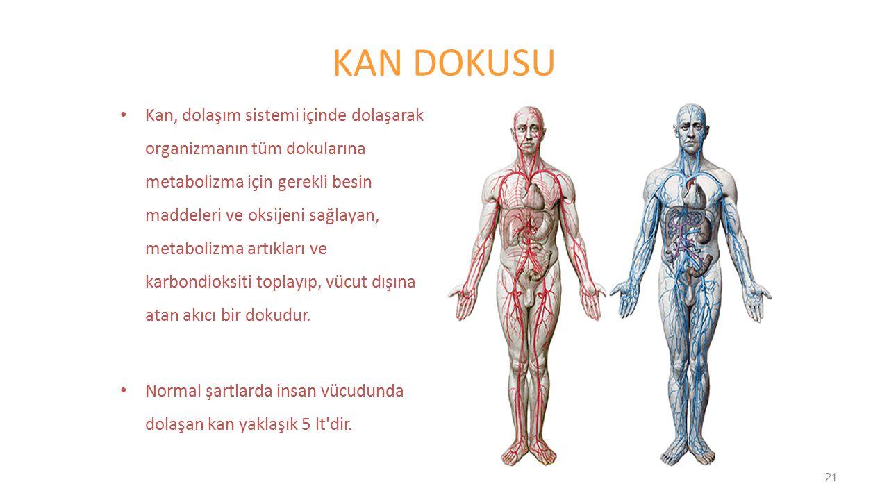 KAN DOKUSU