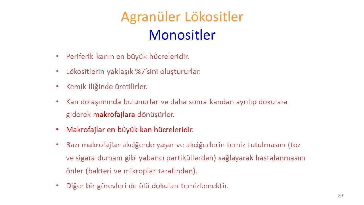 Agranüler Lökositler Monositler
