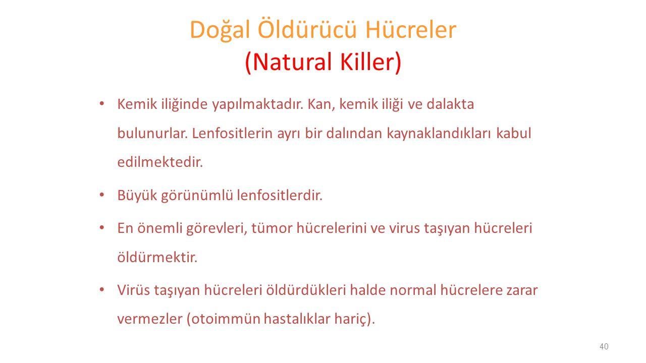 Doğal Öldürücü Hücreler (Natural Killer)