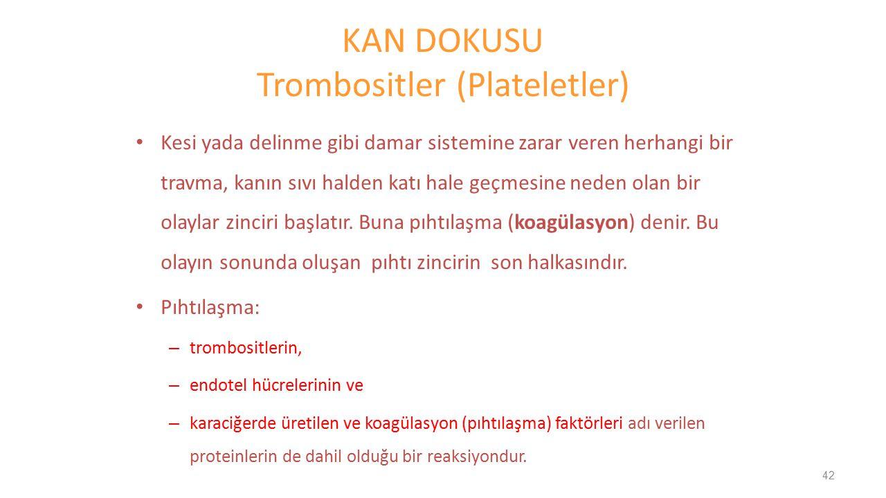 KAN DOKUSU Trombositler (Plateletler)