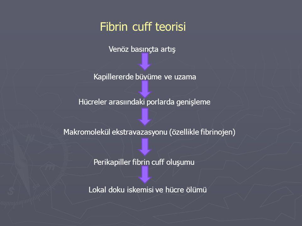 Fibrin cuff teorisi Venöz basınçta artış Kapillererde büyüme ve uzama