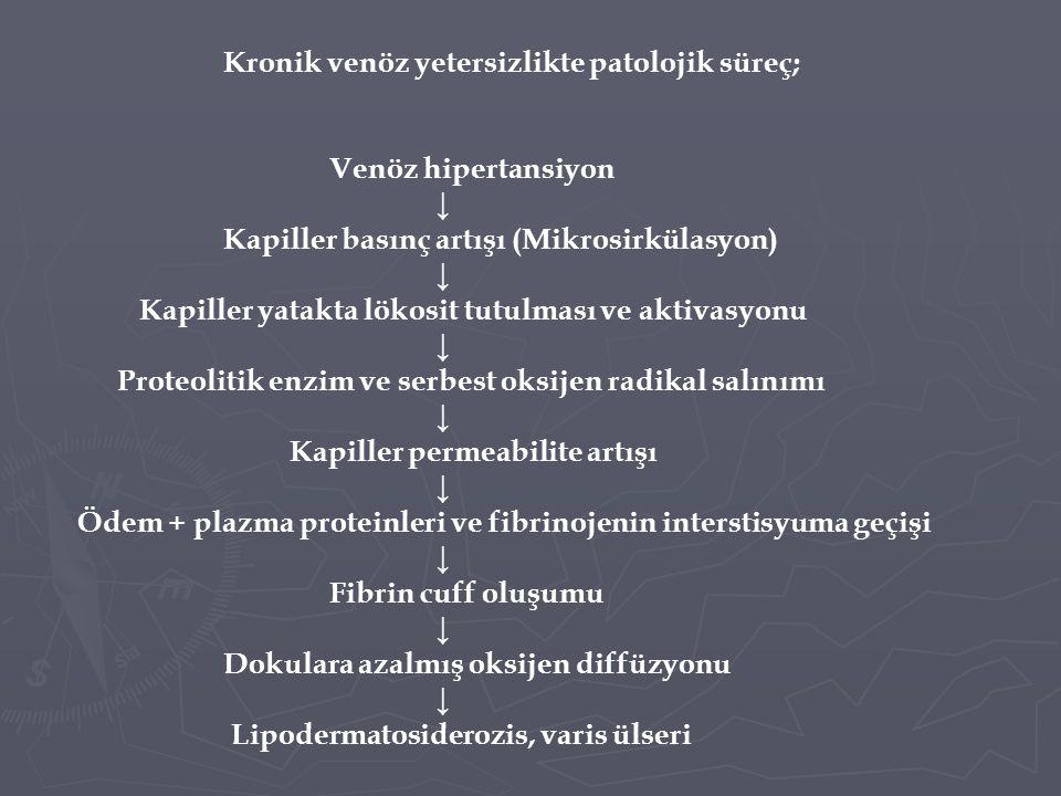 Kapiller basınç artışı (Mikrosirkülasyon)