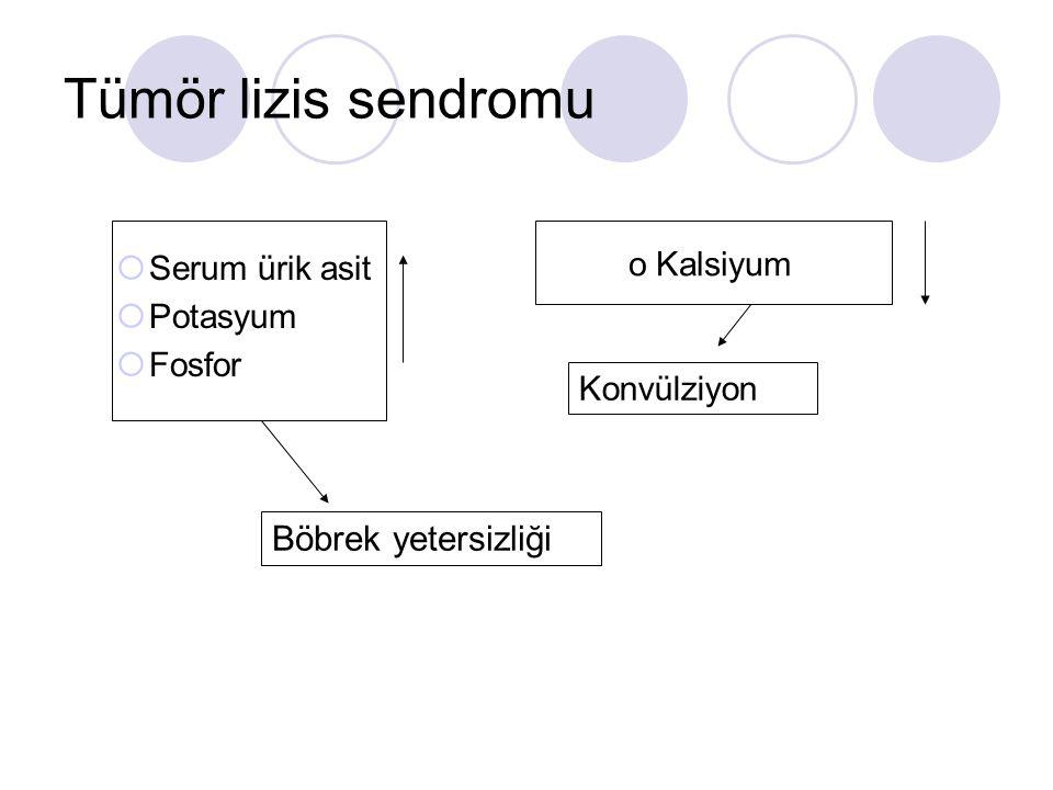 Tümör lizis sendromu Böbrek yetersizliği Serum ürik asit Potasyum