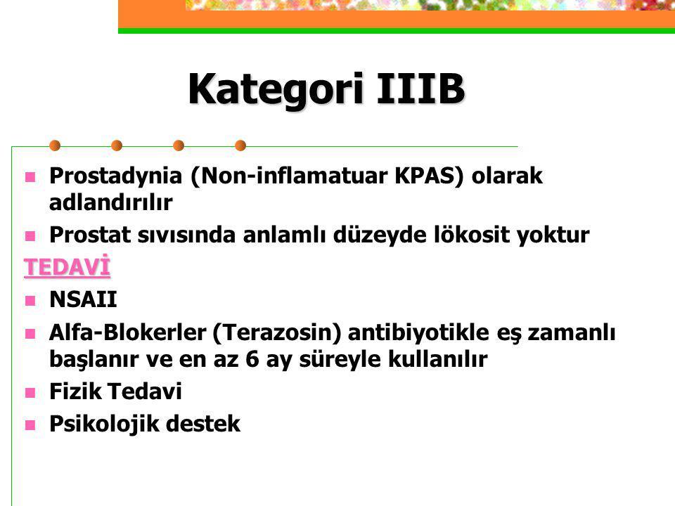 Kategori IIIB Prostadynia (Non-inflamatuar KPAS) olarak adlandırılır