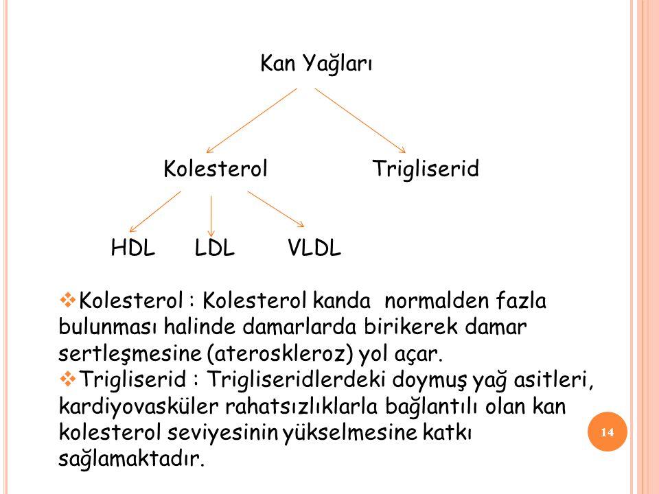Kan Yağları Kolesterol Trigliserid. HDL LDL VLDL.