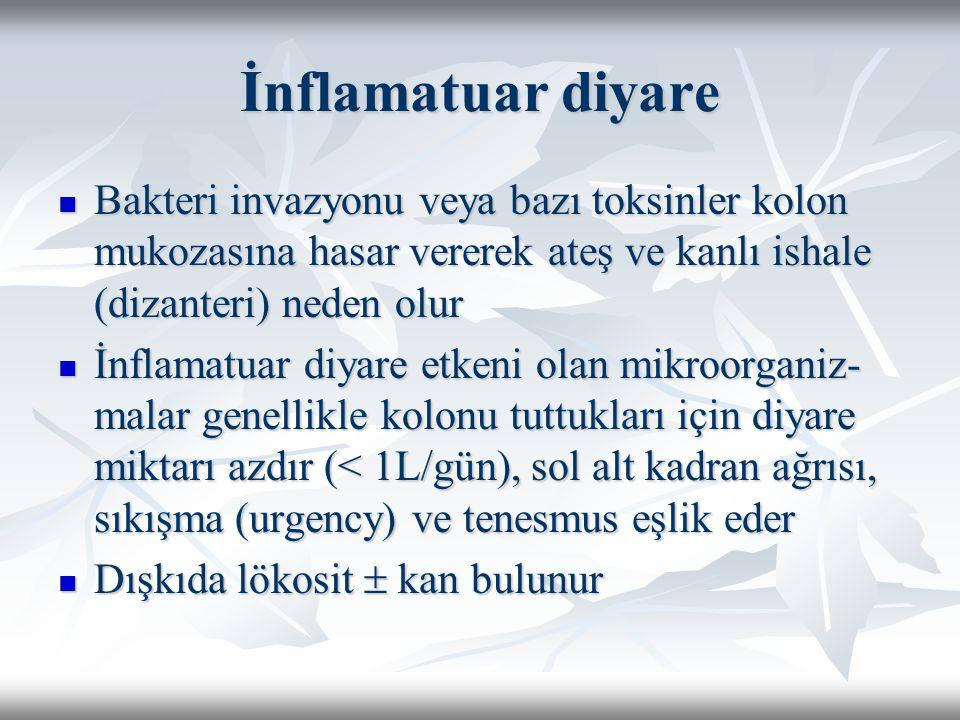 İnflamatuar diyare Bakteri invazyonu veya bazı toksinler kolon mukozasına hasar vererek ateş ve kanlı ishale (dizanteri) neden olur.