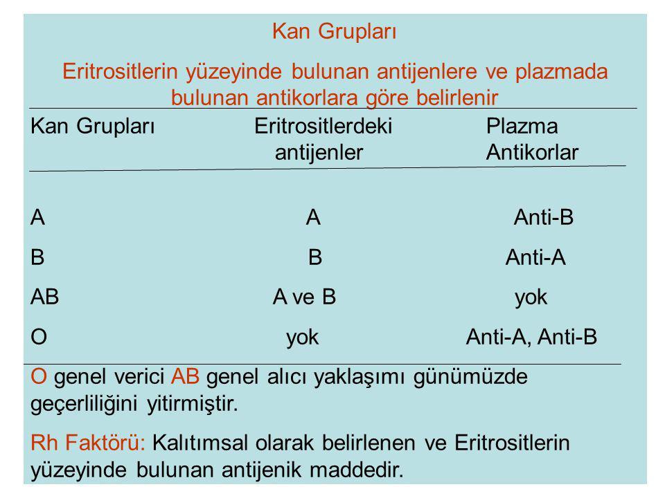 Kan Grupları Eritrositlerin yüzeyinde bulunan antijenlere ve plazmada bulunan antikorlara göre belirlenir.