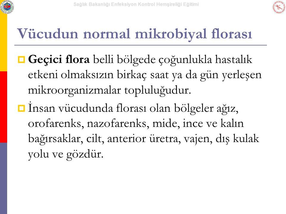 Vücudun normal mikrobiyal florası