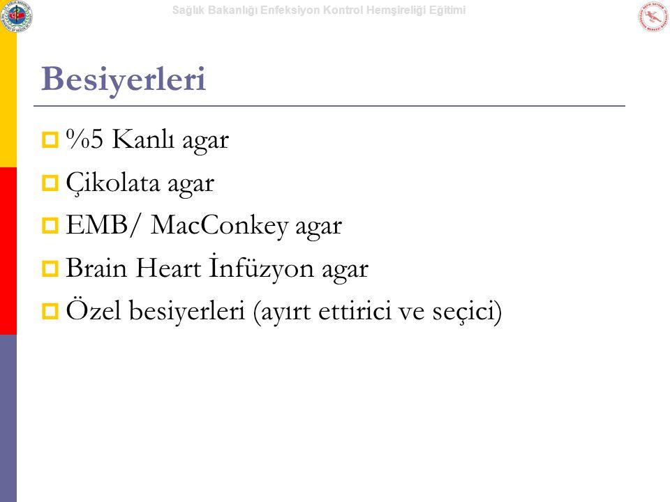 Besiyerleri %5 Kanlı agar Çikolata agar EMB/ MacConkey agar