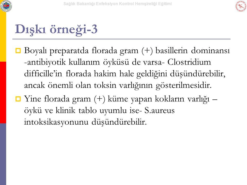 Dışkı örneği-3