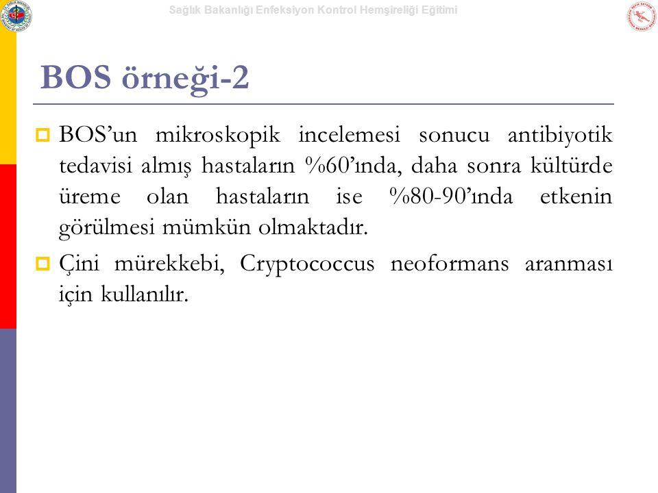 BOS örneği-2