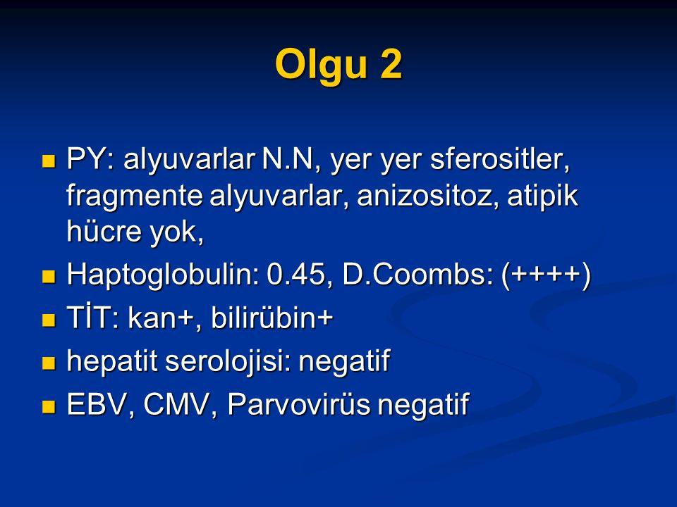 Olgu 2 PY: alyuvarlar N.N, yer yer sferositler, fragmente alyuvarlar, anizositoz, atipik hücre yok,