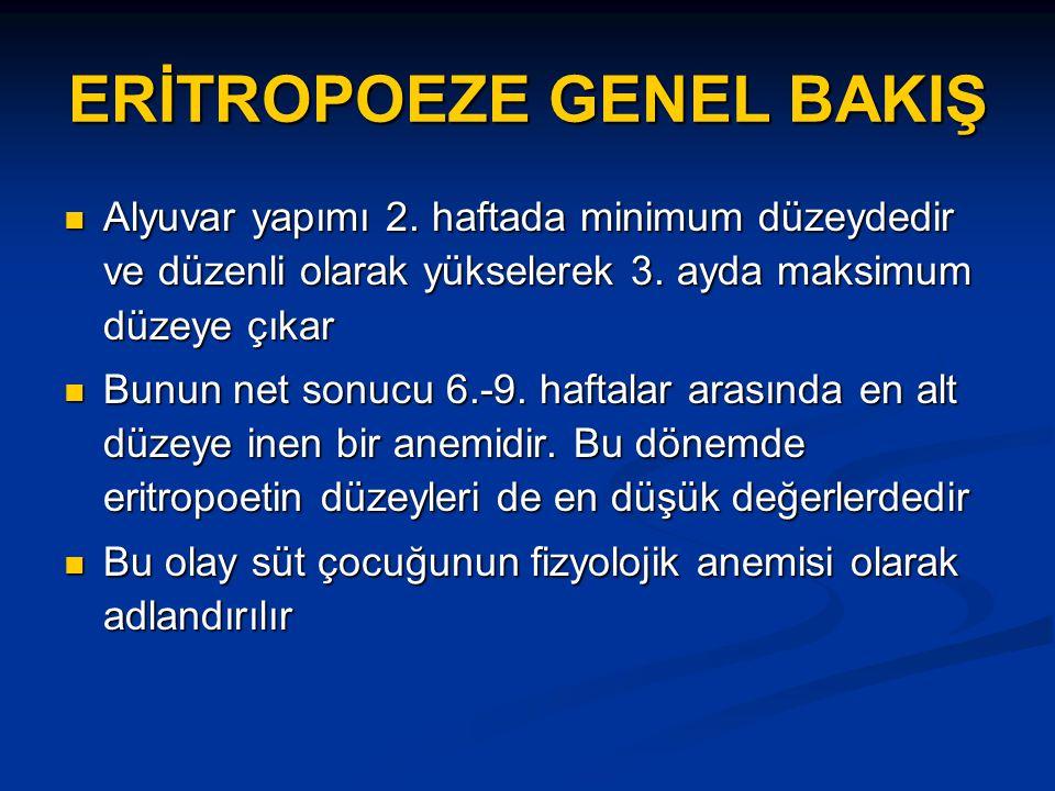 ERİTROPOEZE GENEL BAKIŞ