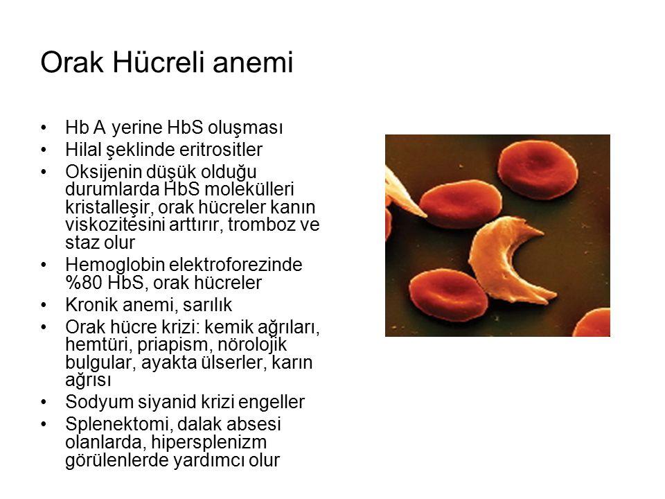 Orak Hücreli anemi Hb A yerine HbS oluşması