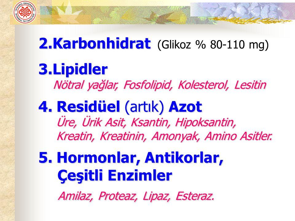 Amilaz, Proteaz, Lipaz, Esteraz.