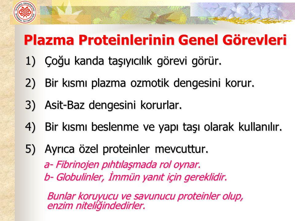Plazma Proteinlerinin Genel Görevleri