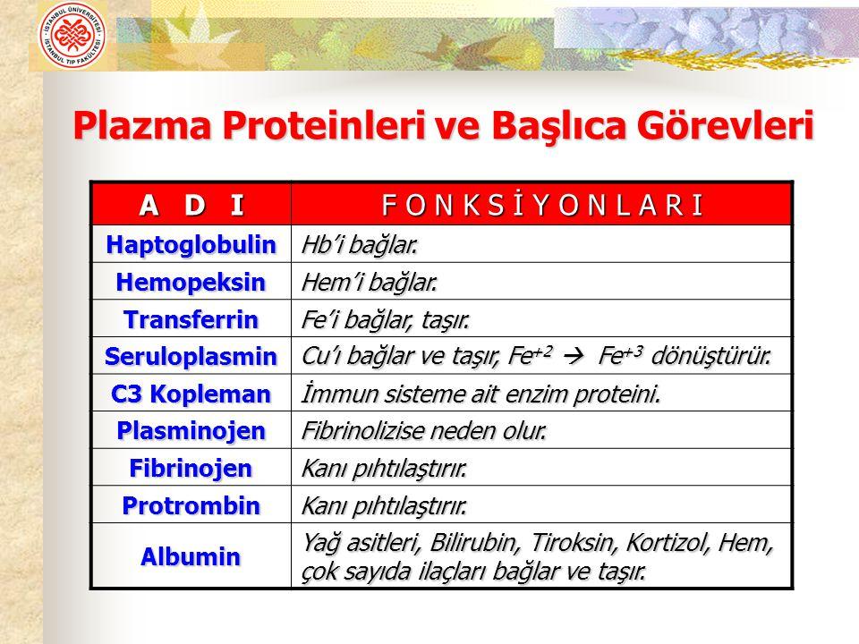 Plazma Proteinleri ve Başlıca Görevleri