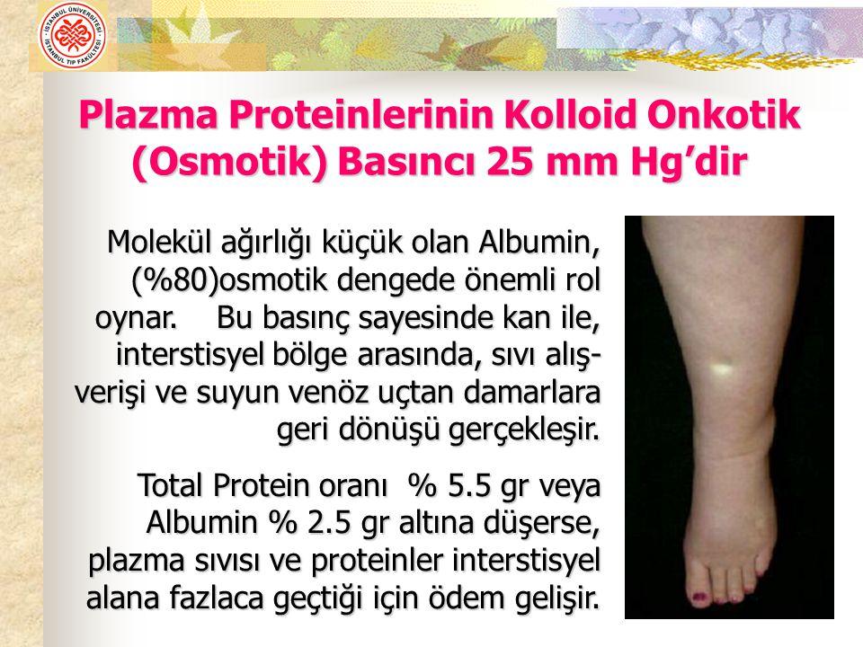 Plazma Proteinlerinin Kolloid Onkotik (Osmotik) Basıncı 25 mm Hg'dir