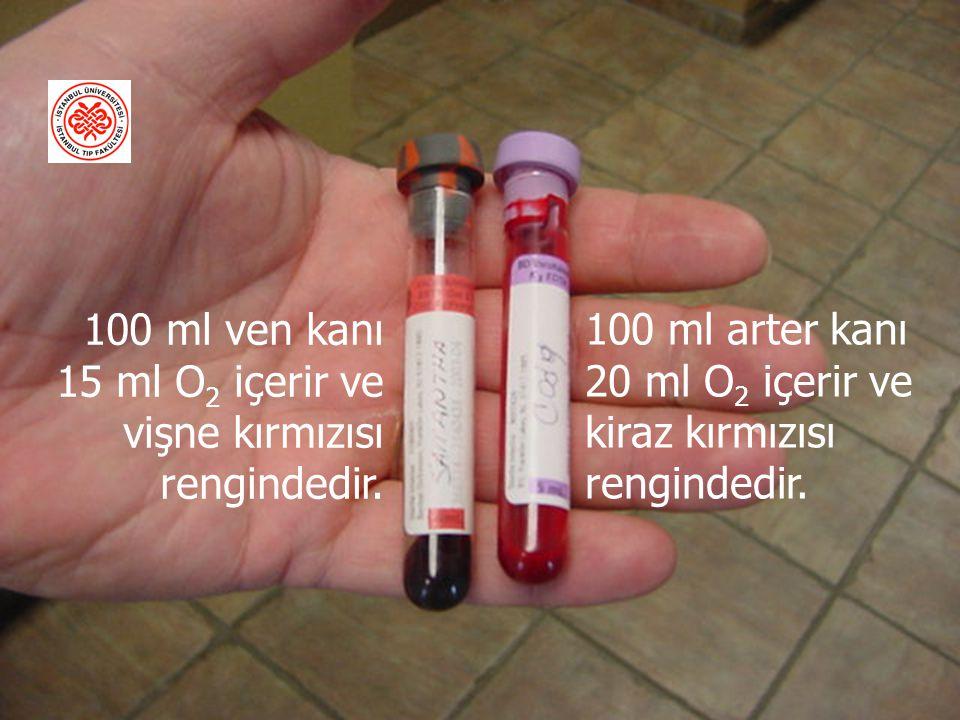 100 ml ven kanı 15 ml O2 içerir ve vişne kırmızısı rengindedir.
