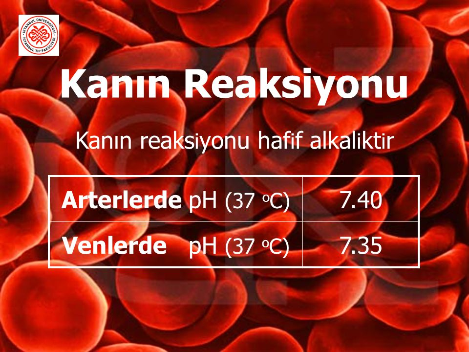 Kanın Reaksiyonu Kanın reaksiyonu hafif alkaliktir
