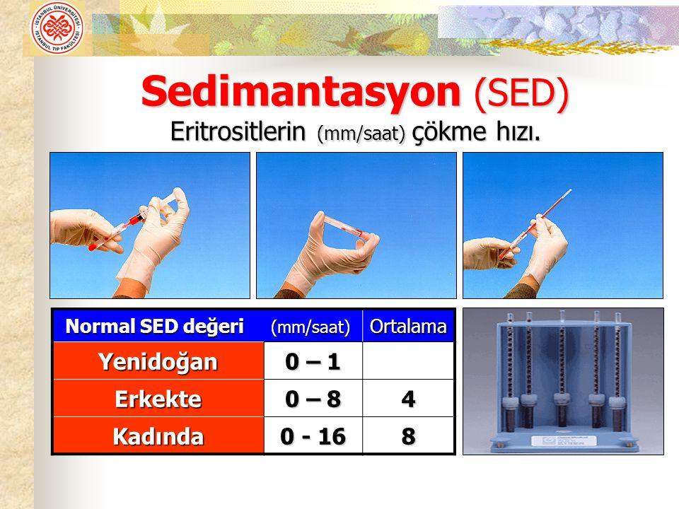 Sedimantasyon (SED) Eritrositlerin (mm/saat) çökme hızı.