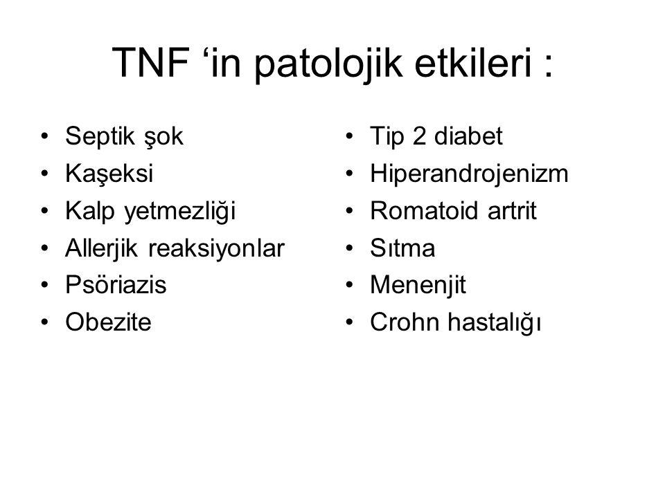 TNF 'in patolojik etkileri :