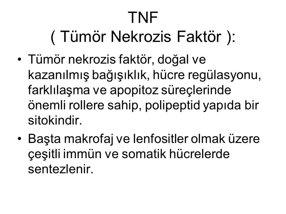 TNF ( Tümör Nekrozis Faktör ):