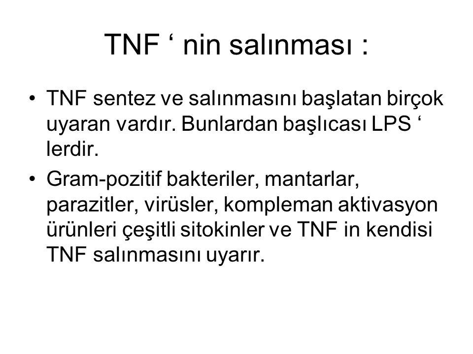 TNF ' nin salınması : TNF sentez ve salınmasını başlatan birçok uyaran vardır. Bunlardan başlıcası LPS ' lerdir.