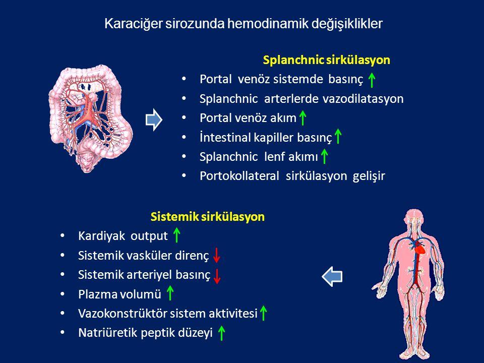 Karaciğer sirozunda hemodinamik değişiklikler