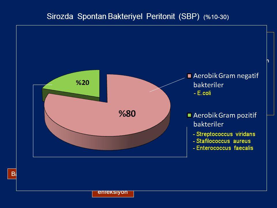 Spontan Bakteriyel Peritonit