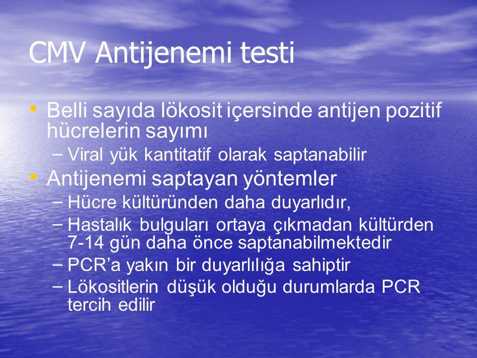 CMV Antijenemi testi Belli sayıda lökosit içersinde antijen pozitif hücrelerin sayımı. Viral yük kantitatif olarak saptanabilir.