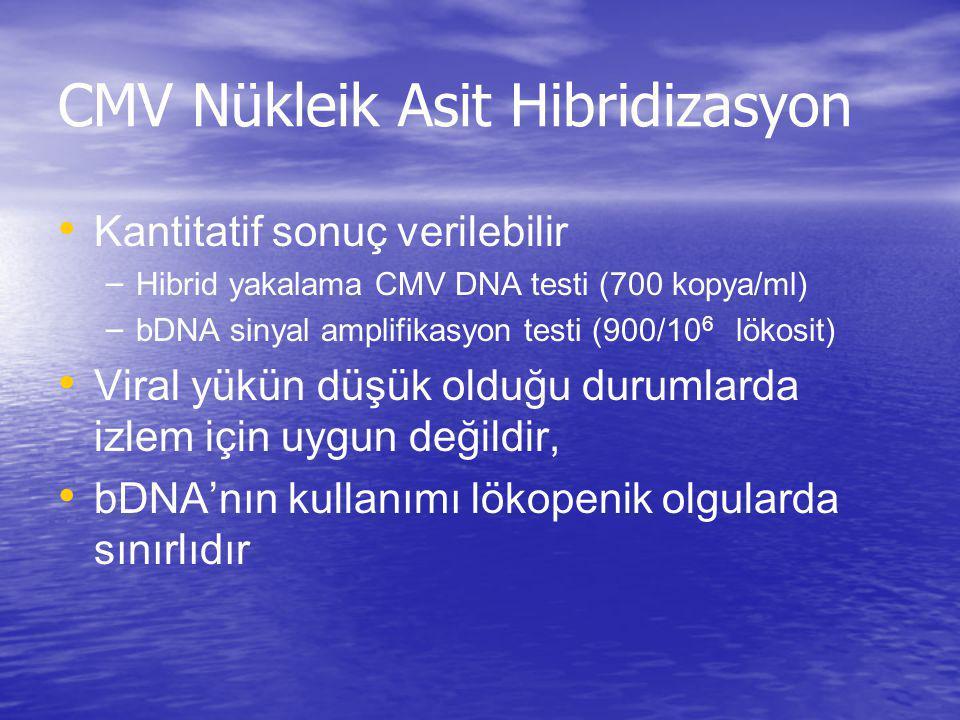 CMV Nükleik Asit Hibridizasyon