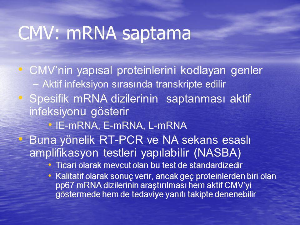 CMV: mRNA saptama CMV'nin yapısal proteinlerini kodlayan genler