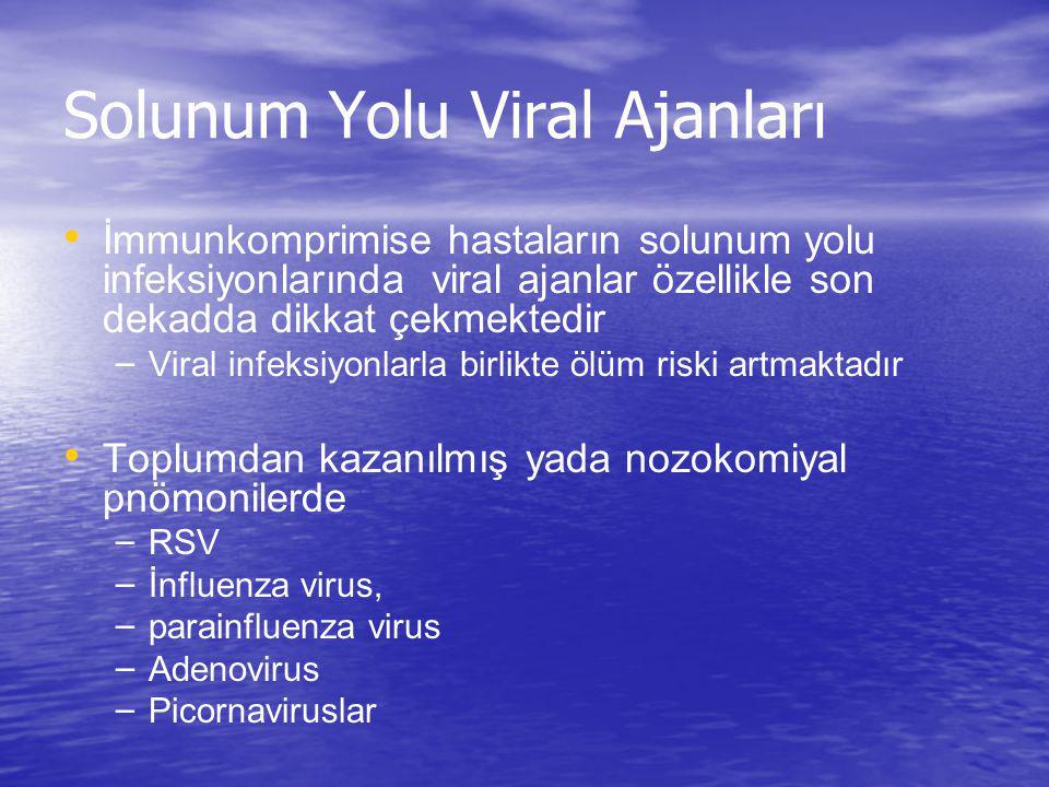 Solunum Yolu Viral Ajanları