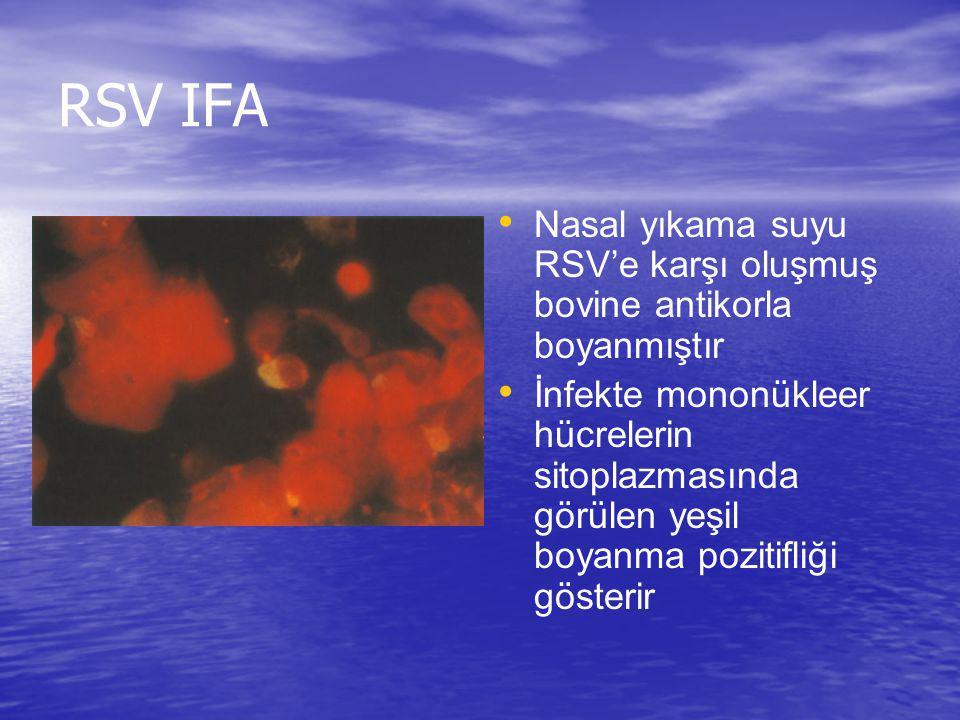 RSV IFA Nasal yıkama suyu RSV'e karşı oluşmuş bovine antikorla boyanmıştır.